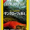特集:豊かな原油に蝕まれるナイジェリア 2007年2月号 ナショナルジオグラフィック